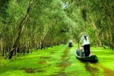 Du Lịch Sài Gòn – Vĩnh Long – Rạch Giá – Cà Mau – Cần Thơ (5N4Đ)